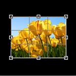 7 полезных онлайн-инструментов для работы с изображениями